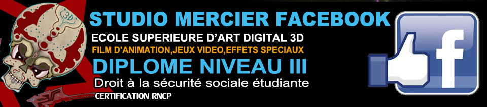 Studio Mercier Facebook